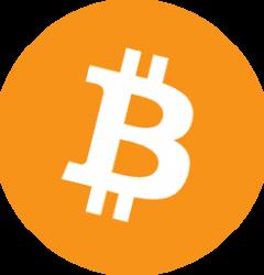 Evs7 Accepts Bitcoin